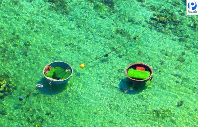 Biển Lý Sơn - Tour Lý Sơn Giá Rẻ