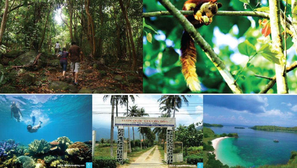 vườn-quốc-gia-Côn-Đảo